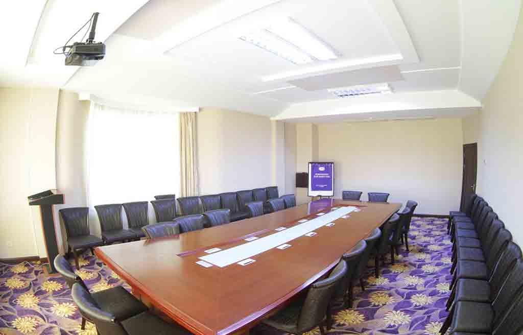 safran-hotel-confrance-hall