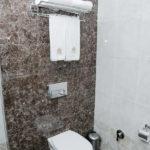 سرویس بهداشتی در اتاق های هتل جی ام سیتی باکو