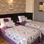اتاق توئین هتل ریویرا باکو